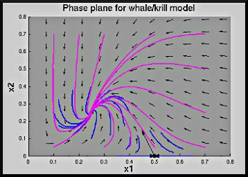 UM Ma216 Demos: 6 3 Whales and Krill2